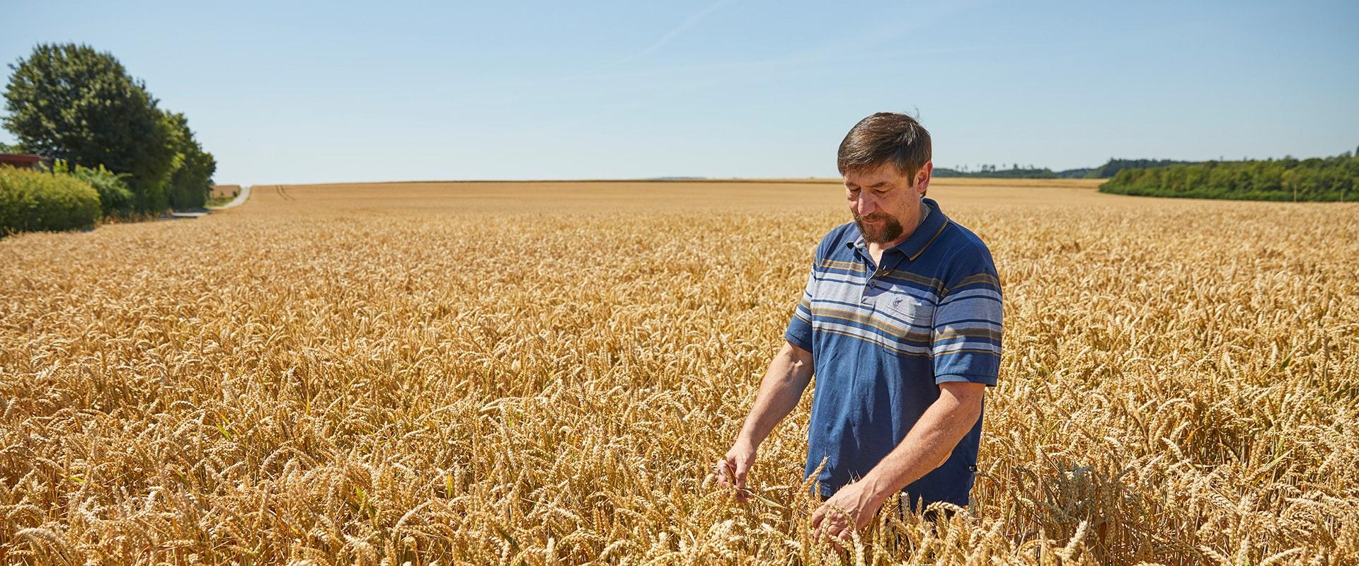 K&U Landwirt Martin Werni - nachhaltige Brot-Kunst